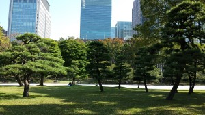 East Imperial Gardens, Tokyo.