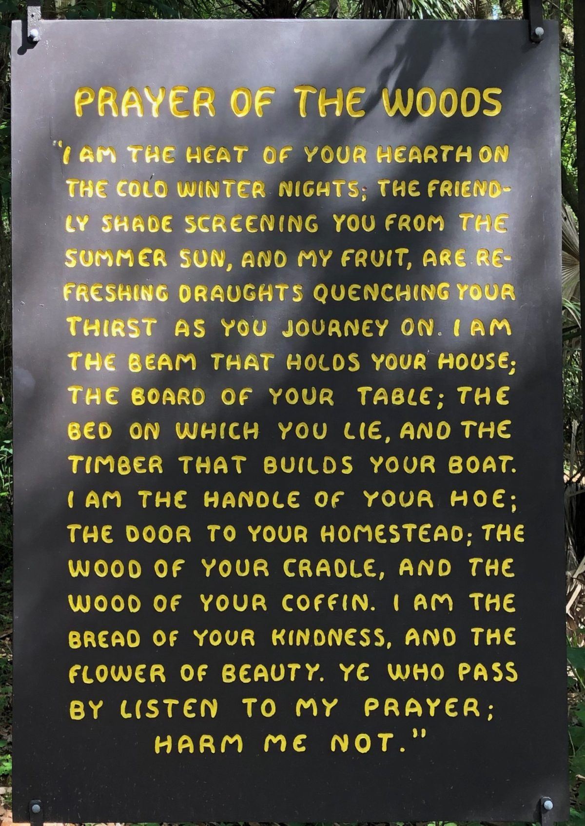 Hillsborough River State Park - Prayer of the Woods